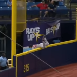 Andrew Benintendi Lights Up Internet With 'Catch Of The Year'